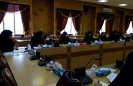 اجرای ویژهبرنامههای میلاد حضرت فاطمه(س) در دماوند/ استقبال از مسافران نوروزی با پیام عفاف و حجاب