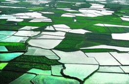 رفع تصرف ۴۳ هکتار از اراضی ملی فیروزکوه/ نقشههای کاداستر در ۴۱۰۰ هکتار تهیه شد