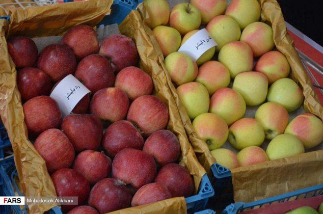 افتتاح جشنواره سیب دماوند