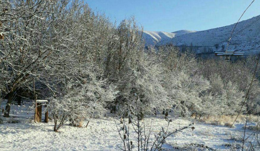 بارش برف پاییزی در شهرستان دماوند