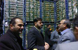 ذخیرهسازی ۲۵۰۰ تن سیب در سردخانههای دماوند/ شهروندان تهرانی در تأمین میوه شب عید مشکلی نخواهند داشت