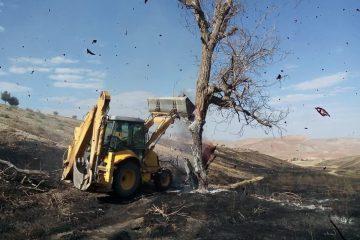 مهار آتشسوزی ۲۰ هکتار از مزارع حریم کیلان/ امکانات موجود پاسخگوی اطفای حریق نیست