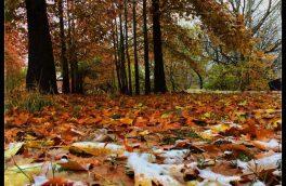 پاییز در طبیعت زیبای دماوند