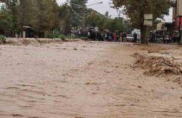 اعزام نیروهای امدادی و خدماتی به منطقه دلیچایی دماوند