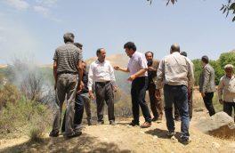آتشسوزی ۱۴ هکتار از باغات در کیلان/ امکانات آتشنشانی پاسخگو نیست+ تصاویر