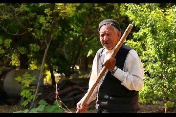 فیلم| «رزق حلال»