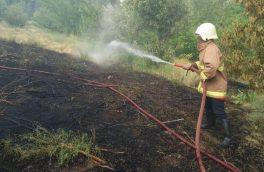 مهار ۷ مورد آتشسوزی و ۳ مورد مارگیری توسط آتش نشانی دماوند+ تصاویر