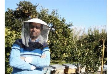 کاهش شدید تولید عسل آویشن با نابودی گیاه آویشن در دماوند